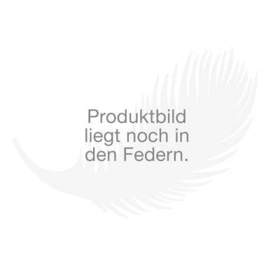 ZD Möbelmanufaktur Massivholzbett Ventano bei Bettenrid